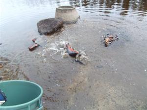 fiskutsättning 001