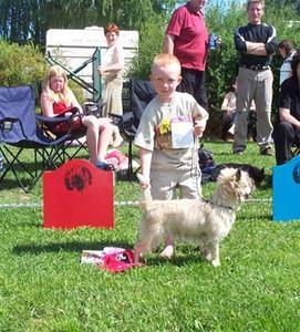 barn-hund-under10