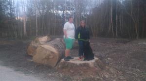 Maria, Emil och Loke på stubben av ett nersågat träd på Almungsvägen, 2015 04 23. DSC_0002