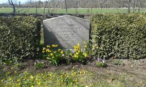 Min mormor och morfar Hermanna och Oskars Cederlunds grav, efter planteringen av Penséer 2015 04 20.