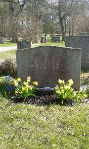 Min far Erik Jakobssons grav, före plantering av Penséer 2015 04 20.