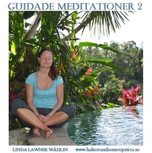 Guidade Meditationer 2
