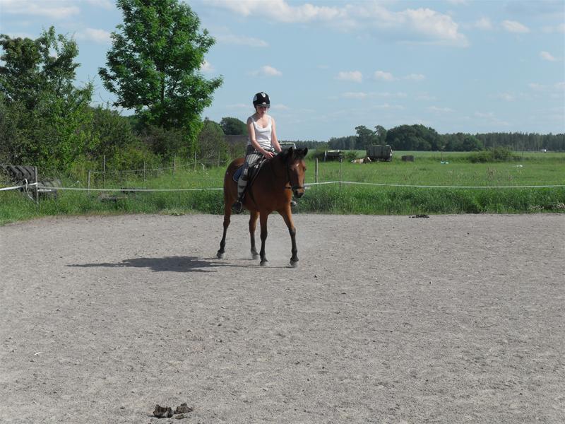 Matilda rider Wilma