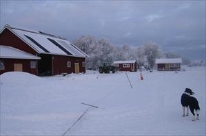 Vinter i Elvestad