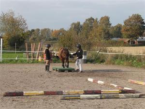 Ponnypyssel