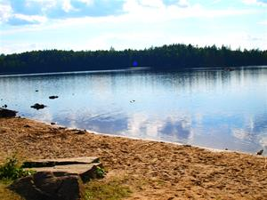 sjön strand