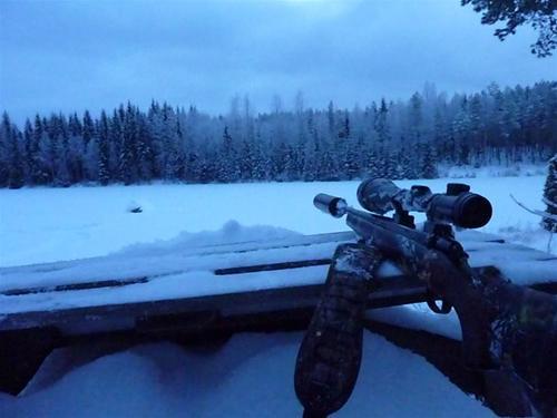 På pass i Finland, spaning efter vitsvanshjort