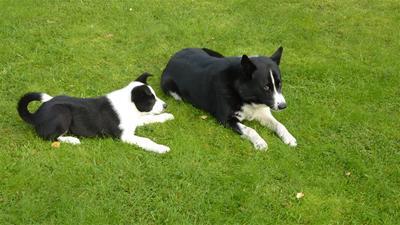Azzar och Semlan sept 2011