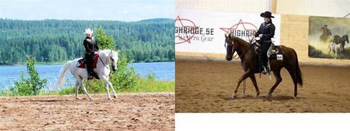 Linda/hästar
