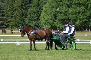 Johannesberg körtävling 240813 262
