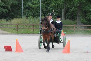 Granö tävlingar 2013 134
