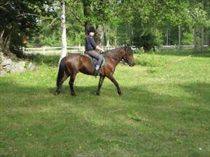 Irre och Hanna rider