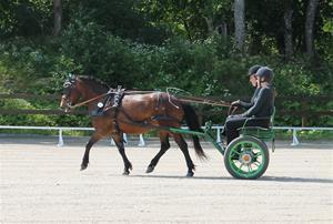 Granö tävlingar 2013 016