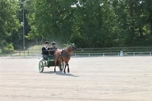 Granö tävlingar 2013 041