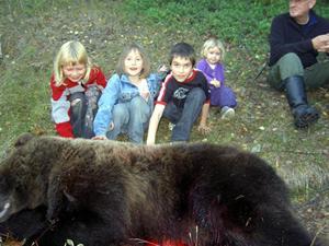32.Tänk att få klappa en riktig björn i Bursiljum