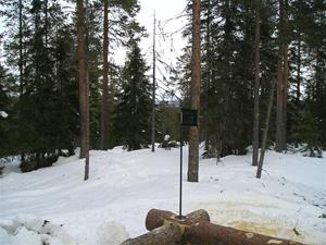 P1010060