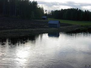 Sommar i Bursiljum041