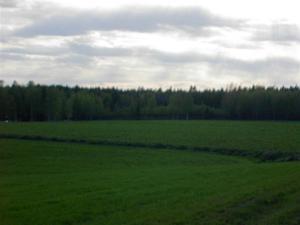 Sommar i Bursiljum046