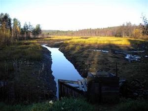 3. Tömda dammängar i vilka harren odlas
