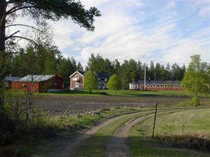 Sommar i Bursiljum017