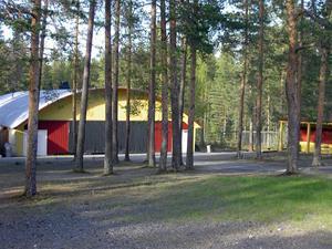 Sommar i Bursiljum022