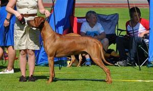 Thabo vinner Championklassen