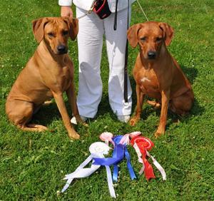 Indra och Enya med sina priser från helgens Rasspecial:=)