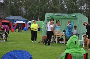 Millie och Therese i regnet, Alfta