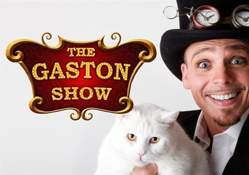 Vykort Gaston Katt3