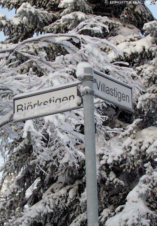 Kirunabilder-10 03-33-47