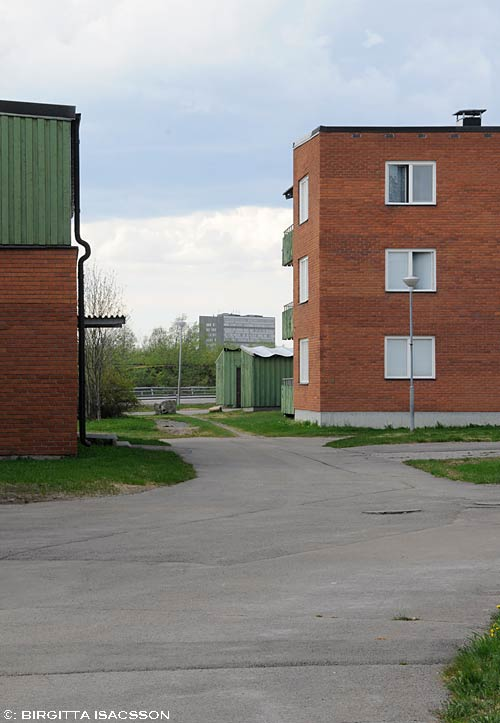 Ullspiran-09