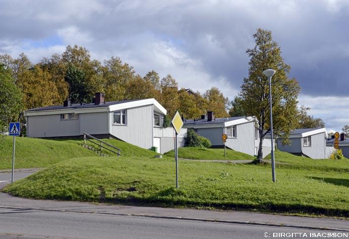 Kirunabilder-051