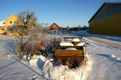 Vinter2012-2
