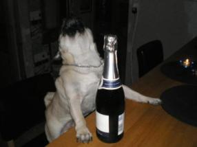 Champagnemops2