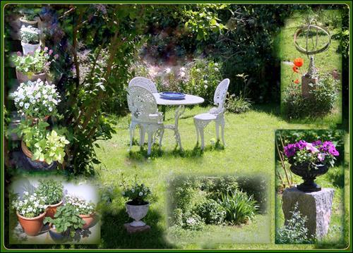 Trädgården Juni 17