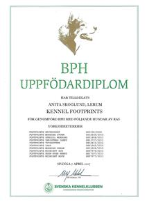 Uppfdiplom PBH 17a Scan0004