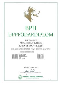 Uppfdiplom BPH 17b Scan0005