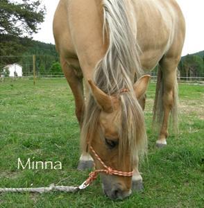 Minna5