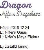 dragonnamn