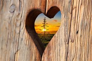 heart-2041866_1280
