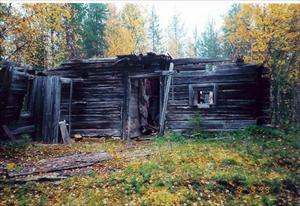 Skogshuggar koja med stall vid Kuobmujåkka