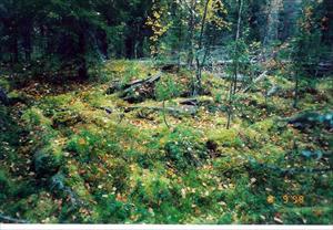 Lämningar efter en bosättning mellan Puolvekj och Kuobmujåkkå