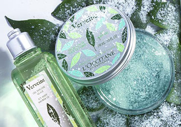 verbena collections ICY