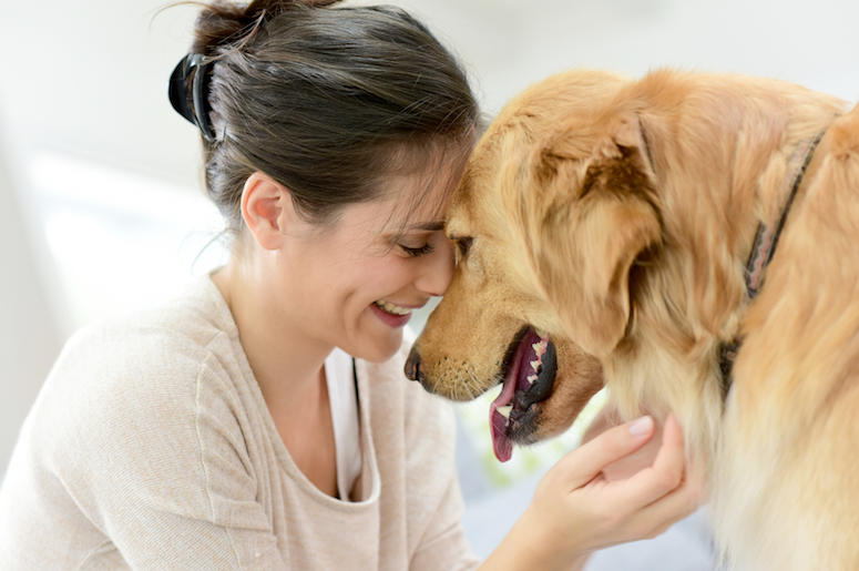Dogs obey women more than men according to new study | The