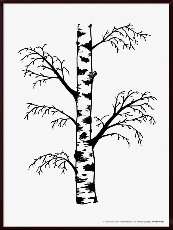 Björkposter (30x40 cm)