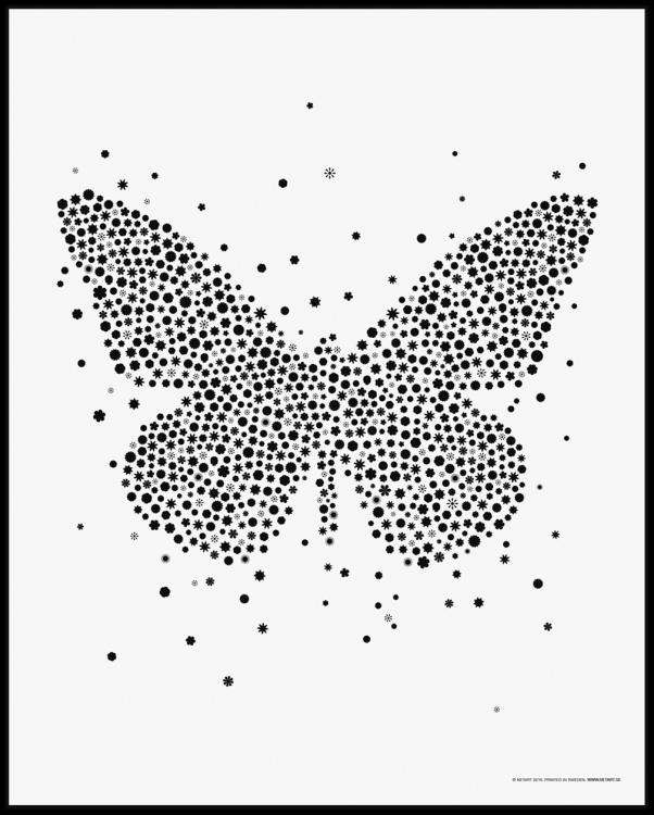 Fjärilsposter (40x50 cm)