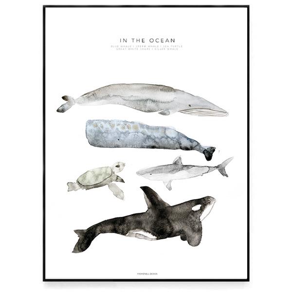 Poster - In the ocean