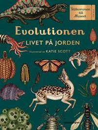Bok - Evolutionen: Livet på jorden