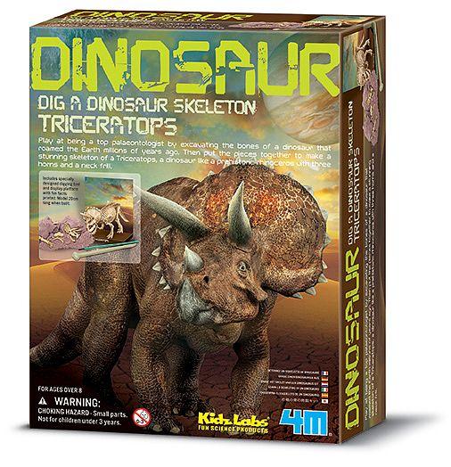 Triceratops skelett - utforskarkit