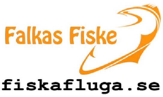 Falkasfiske